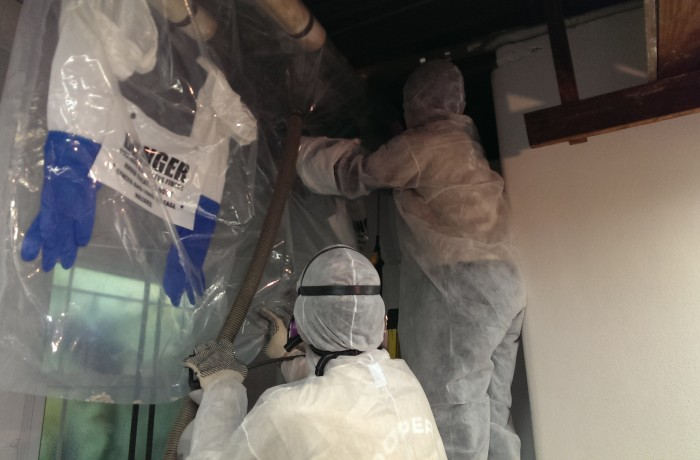 Asbestos Pipe Insulation Removal Company
